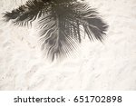 palm trees cast shadows on the... | Shutterstock . vector #651702898