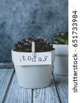 """Small photo of Pot with a flower, on the clothes-pin is affixed the inscription """"today"""""""