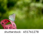 Small photo of Lose weight diet side view green grass measuring tape pink color figures on it sits blue butterfly close view in blurred background dream lightness flit