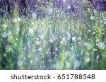 beautiful meadow background.... | Shutterstock . vector #651788548