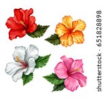 set of stylized tropical plants ... | Shutterstock .eps vector #651828898