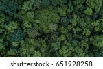 aerial view of the forest ... | Shutterstock . vector #651928258