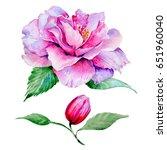 wildflower tea rose flower in a ... | Shutterstock . vector #651960040