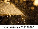 Umbrella In The Rain With...