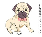 pug  vector  illustration | Shutterstock .eps vector #652098370