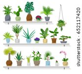set of vector indoor plants on... | Shutterstock .eps vector #652117420