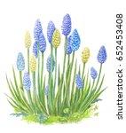 a bush of blue flowers...   Shutterstock . vector #652453408
