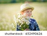 happy childhood.  cute boy in a ... | Shutterstock . vector #652490626