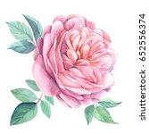 roses  watercolor | Shutterstock . vector #652556374