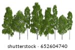 trees in a row isolated on... | Shutterstock . vector #652604740