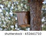 bird nest  | Shutterstock . vector #652661710