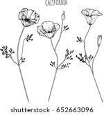 california flower clip art... | Shutterstock .eps vector #652663096