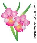 singapore national flower vanda ...   Shutterstock .eps vector #652683694