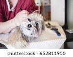 lhasa apso at grooming salon.... | Shutterstock . vector #652811950