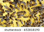 the photo shows beehive honey... | Shutterstock . vector #652818190