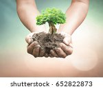 World environment day concept: Human handing big tree over blurred nature background