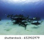grey reef sharks circling | Shutterstock . vector #652902979