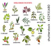 Best Herbal Remedies For...