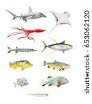 sea life great set. hammerhead... | Shutterstock . vector #653062120