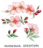 set of watercolor sakura... | Shutterstock . vector #653197294