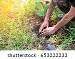 afforest for make a green forest | Shutterstock . vector #653222233