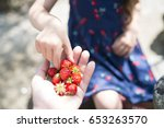 parent and child hand... | Shutterstock . vector #653263570