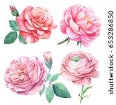 Peonies   Ranunculus  Roses. ...
