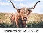 scottish highland  | Shutterstock . vector #653372059