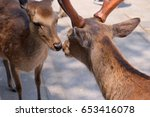 two deers are kissing with love | Shutterstock . vector #653416078