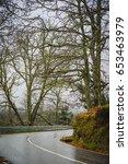 forest road in the serra da... | Shutterstock . vector #653463979