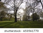 relaxing forest | Shutterstock . vector #653561770