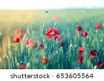 photo of beautiful poppy fields ... | Shutterstock . vector #653605564