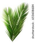 palm leaf for your design.... | Shutterstock . vector #653608684