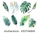 watercolor leaves set. hand... | Shutterstock . vector #653746840