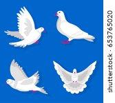 pigeons or white dove birds... | Shutterstock .eps vector #653765020