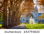 a row of trees leading to a... | Shutterstock . vector #653793820