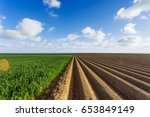 Plowed agricultural fields...