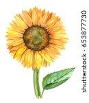 Sunflower Illustration In...