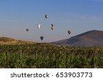 Balloon Ride At Winery Vineyard ...