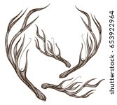 hand drawn deer antlers. vector ... | Shutterstock .eps vector #653922964