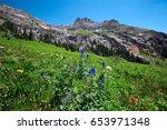 yankee boy basin  near ouray... | Shutterstock . vector #653971348