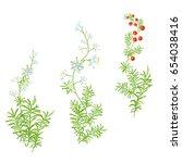 set of green branches  white ...   Shutterstock .eps vector #654038416