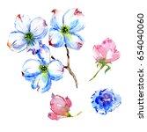 Wildflower Dogwood Flower In A...