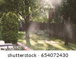 Small photo of Green Backyard with Rays of Sunlight