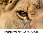 closeup portrait of a african... | Shutterstock . vector #654079588