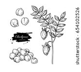 chickpeas hand drawn vector... | Shutterstock .eps vector #654102526