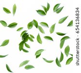 Stock photo pattern texture with green leaves and branches isolated on white background lay flat top view 654136834