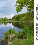 pond in the scottish countryside   Shutterstock . vector #654189850