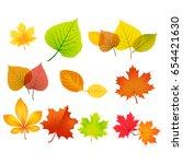 Autumn Leaves Set Vector On...