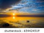 Sunset Swan Silhouette On Lake...